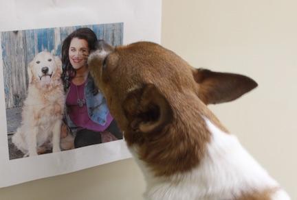 Chip endorses Grossberg for Mrs. Kentucky