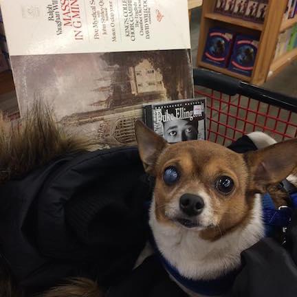 Adventures of Chip de 'Ville (Half Price Books)
